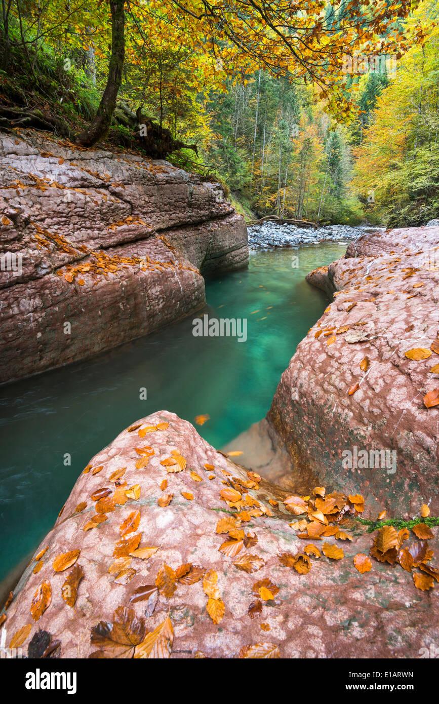 The Taugl river, Hallein District, Salzburg, Austria Stock Photo
