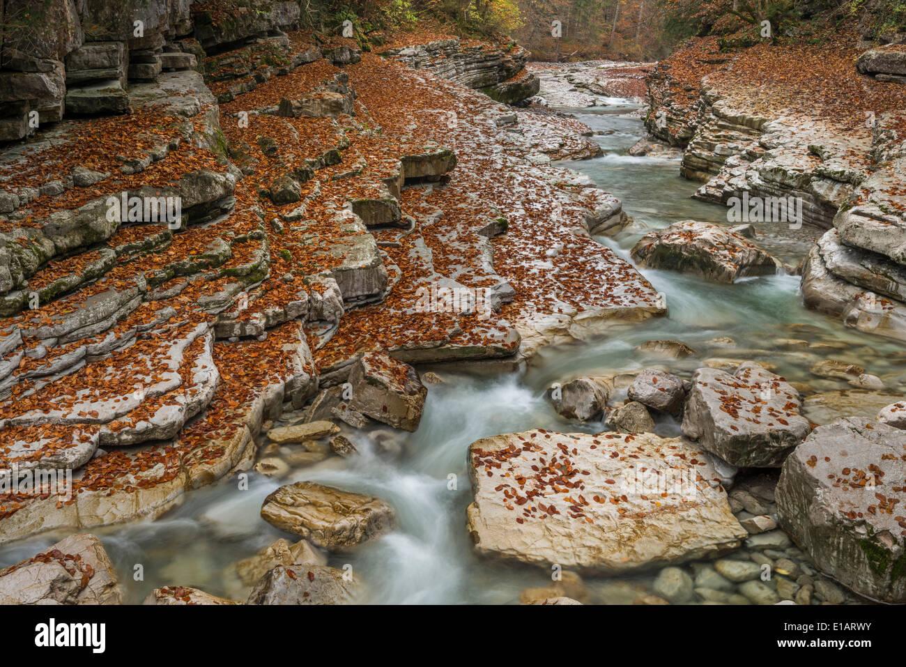Taugl or Tauglbach, Tauglgries nature reserve, Hallein District, Salzburg, Austria Stock Photo