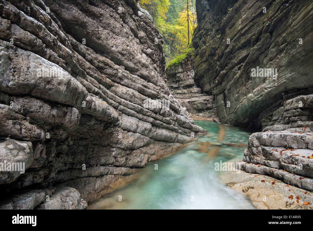 The Taugl river, Taugl gorge, Hallein District, Salzburg, Austria Stock Photo