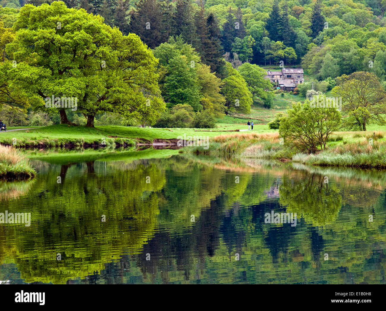 Elterwater and the River Brathay in the Lake District, Cumbria, UK - Stock Image