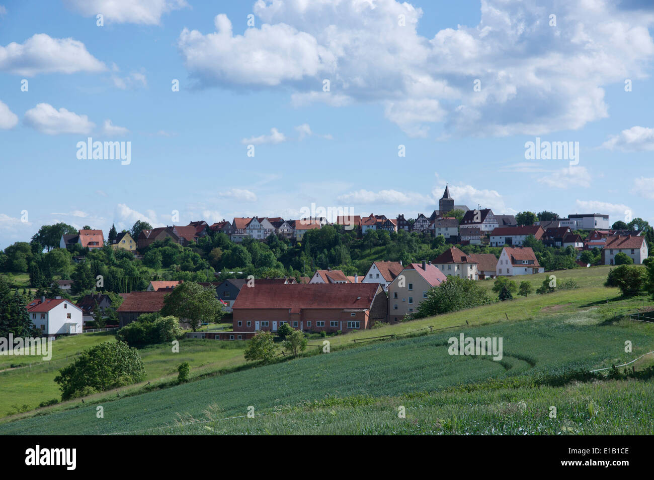 view over summerly meadows to waldeck village, hesse, germany, europe - Stock Image