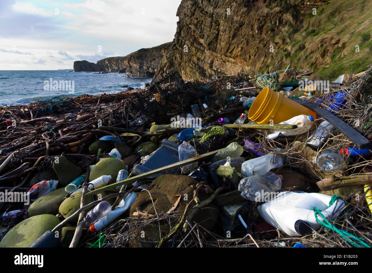 Coastal plastic pollution along Scapa Flow,  Orkney Isles - Stock Image