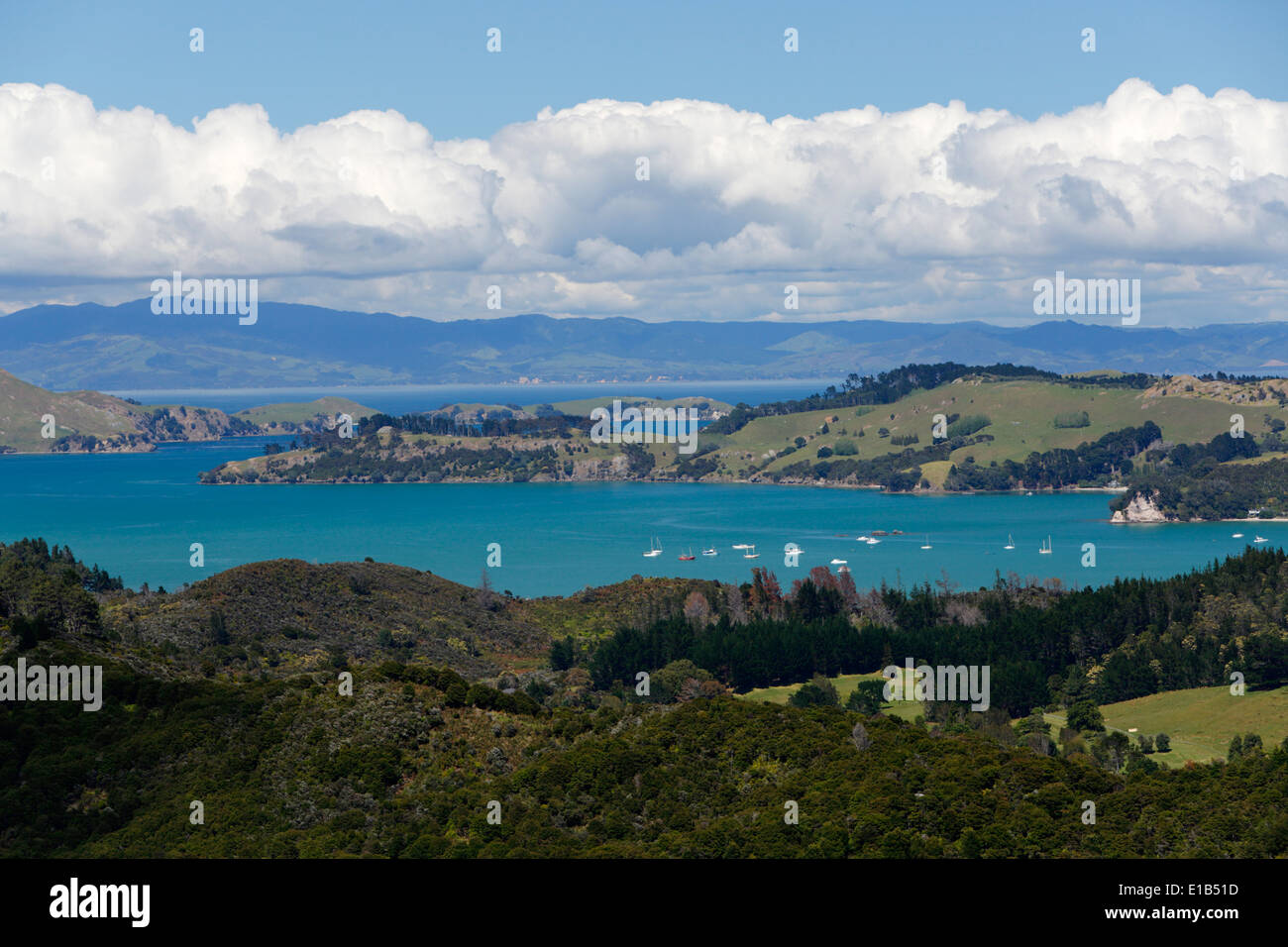 Driving Creek Railway (narrow gauge mountain railway). View over Hauraki Gulf from Eyefull Tower - Stock Image