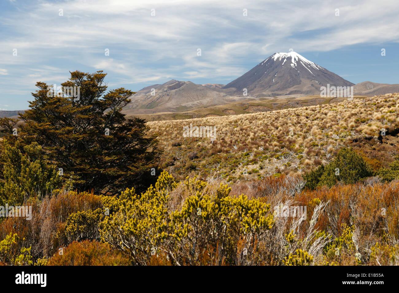 Mount Ngauruhoe, an active stratovolcano - Stock Image