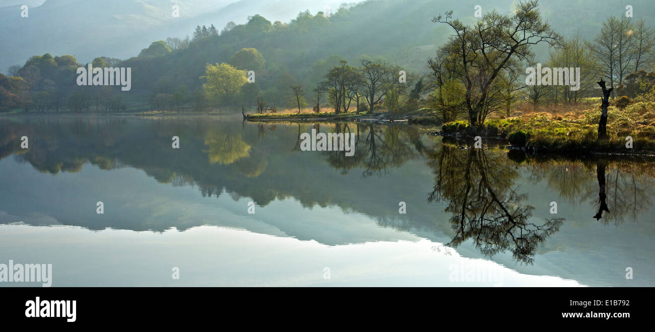 Reflections of Llyn Gwynant a lake in the valley of Nantgwynant at the heart of Snowdonia National Park Gwynedd North Wales UK, - Stock Image