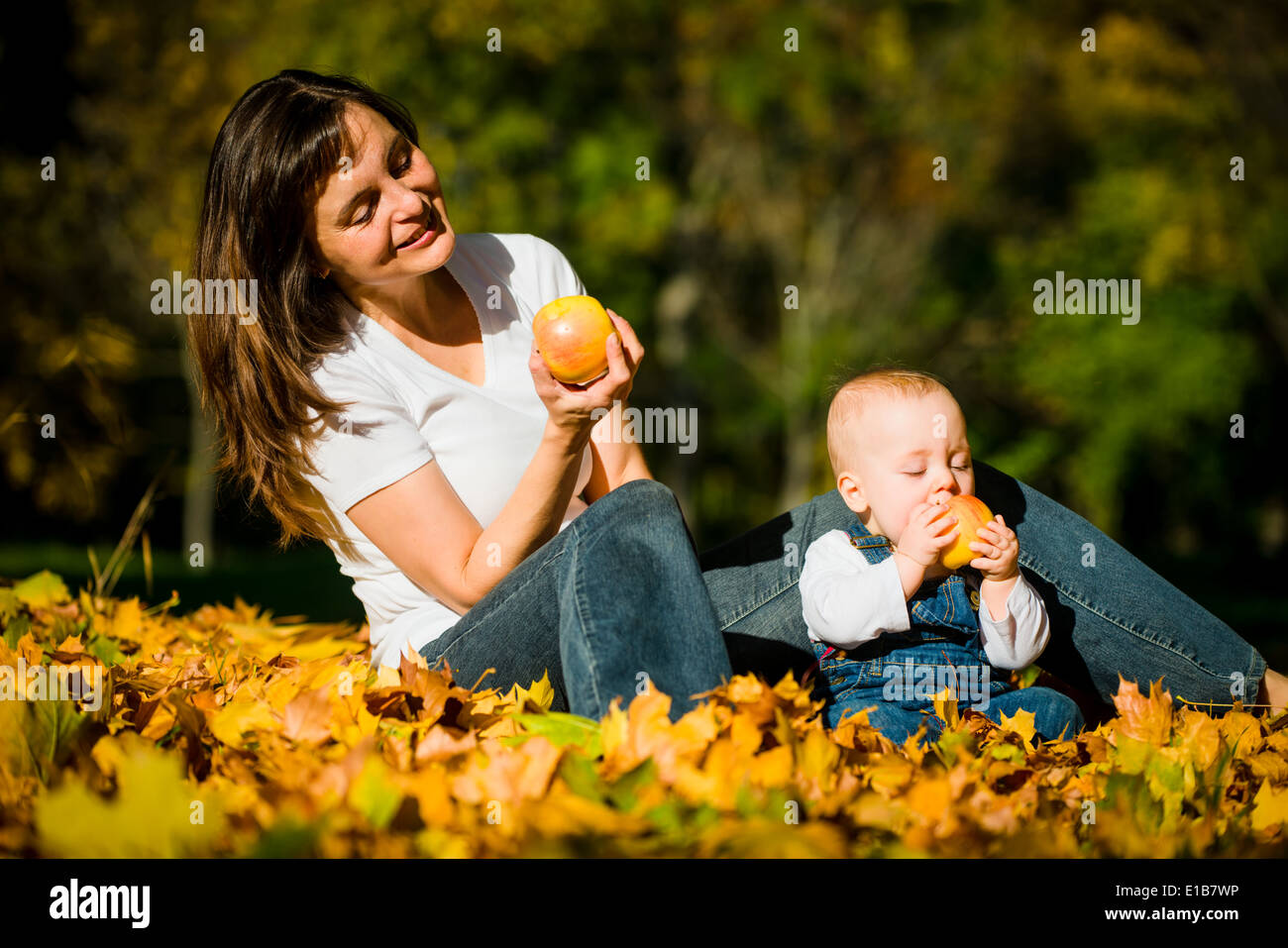 Mother with her cute baby eating apples outdoor in autumn nature