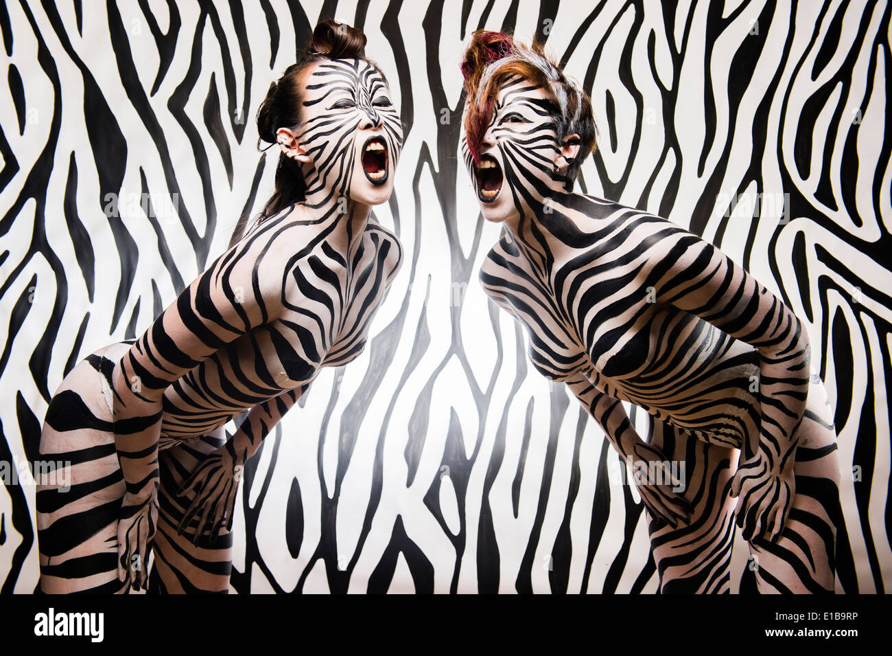 Two women girls with their bodies painted in black and white zebra stripes to match the background - Stock Image