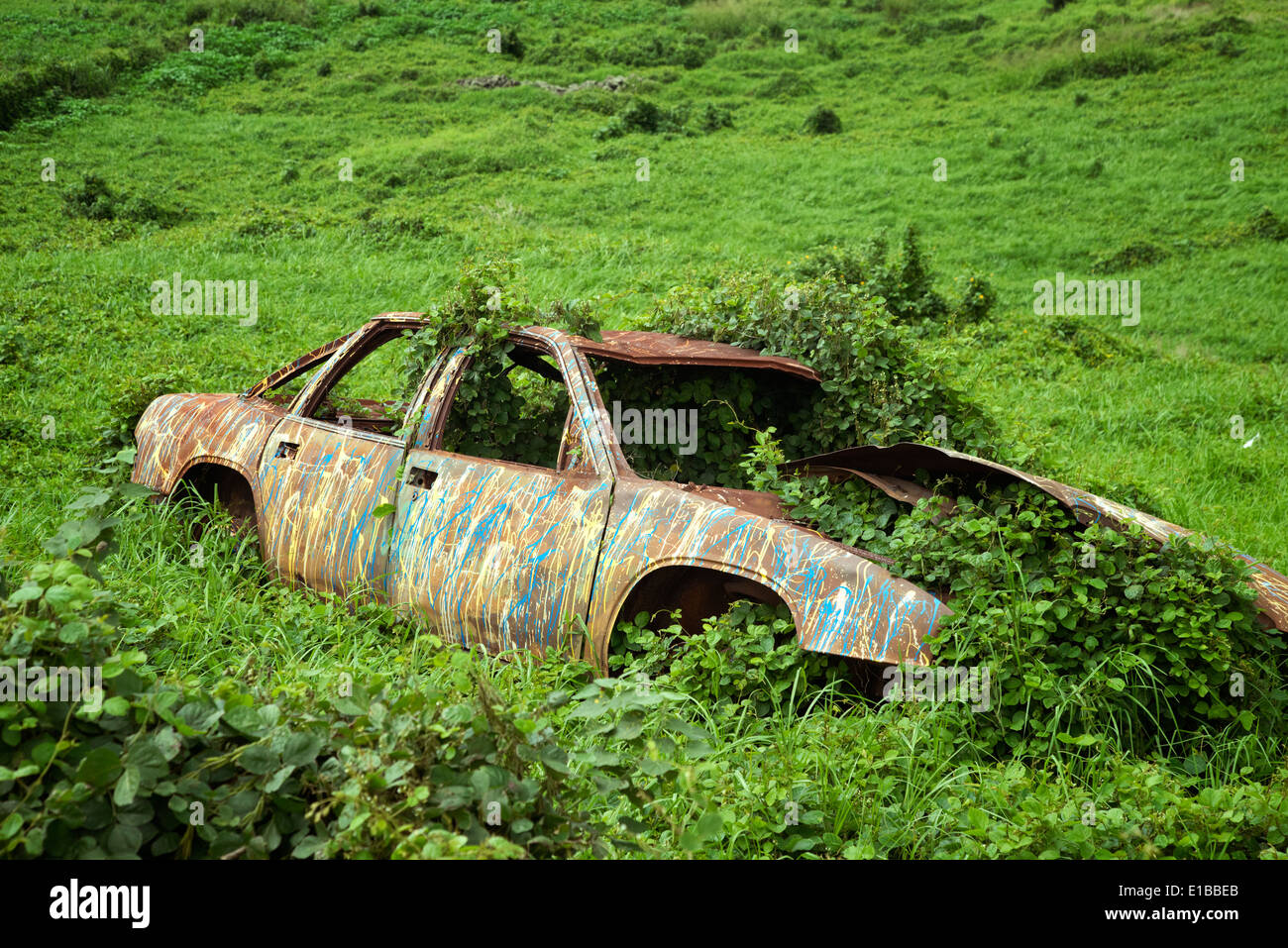 Old wrecked and painted car. Upland, Maui, Hawaii. - Stock Image