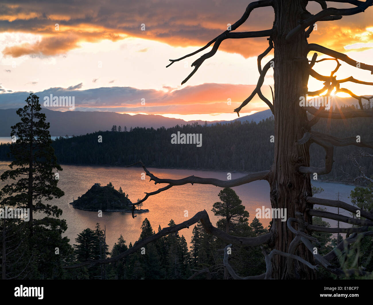 Sunrise over Emerald Bay with dead tree and Fannette Island, Lake Tahoe, California. Stock Photo