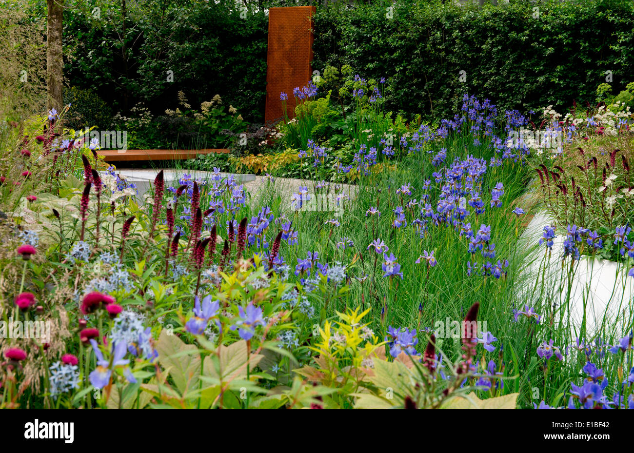 The RBC Waterscape Garden a gold medal winner designed by Hugo Bugg at The Chelsea Flower Show 2014, London, UK - Stock Image