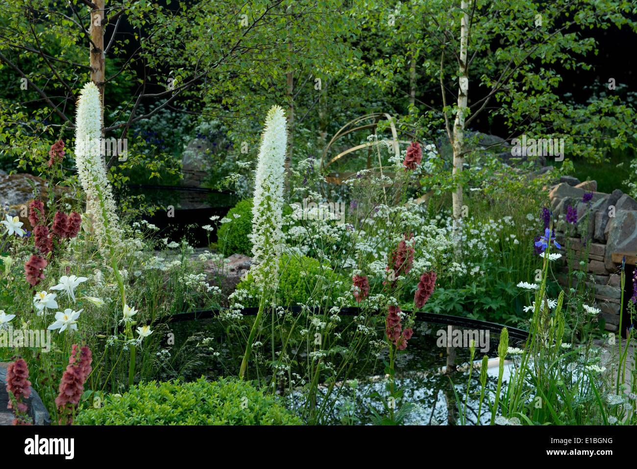 The Vital Earth Night Sky Garden, a gold medal winner at The Chelsea Flower Show 2014, London, UK - Stock Image
