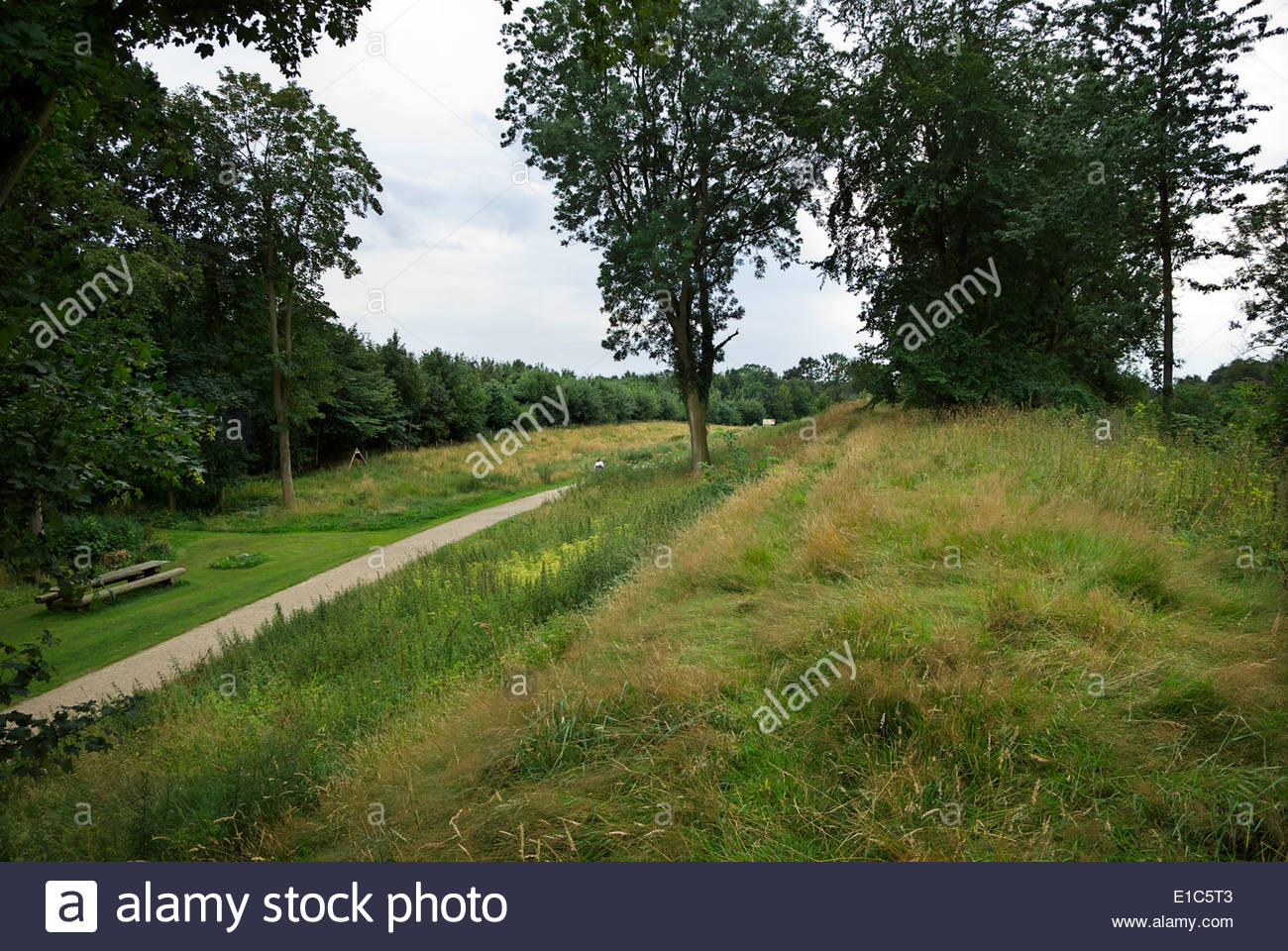 Danevirke, a earthwork fortification 19 mi (30 km) long built in phases between AD 737 and early 13th century by Danish rulers. - Stock Image