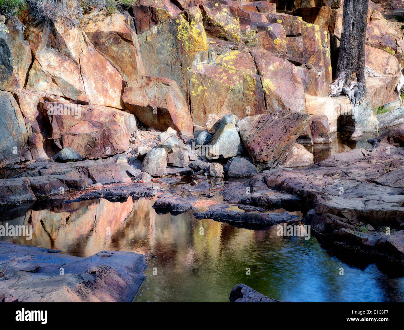 Pool of water with lichen covered rocks on Glen Alpine Creek. Near Fallen Leaf Lake, California - Stock Image