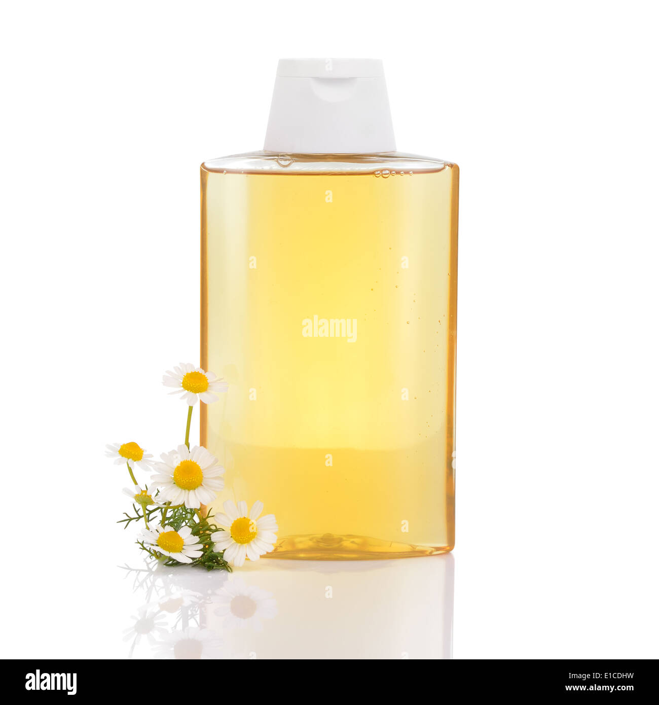 Gentle hair shampoo with chamomille and camomile flowers isolated on white background. Highlights and illuminates blonde hair. - Stock Image