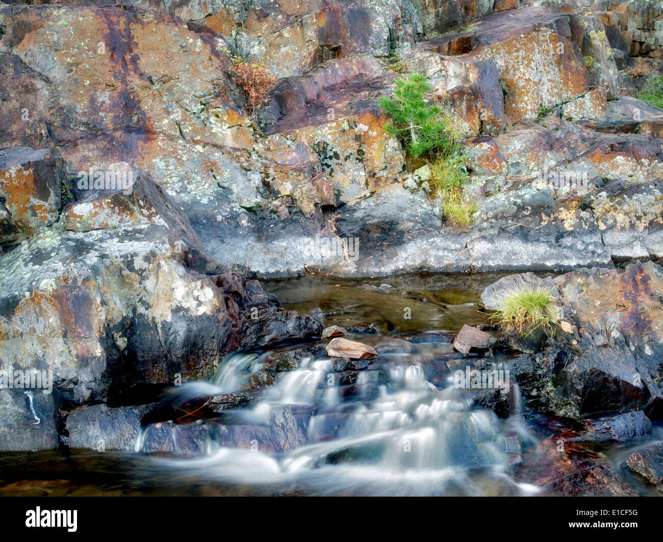 Small waterfal with lichen covered rocks on Glen Alpine Creek near Fallen Leaf Lake. California - Stock Image