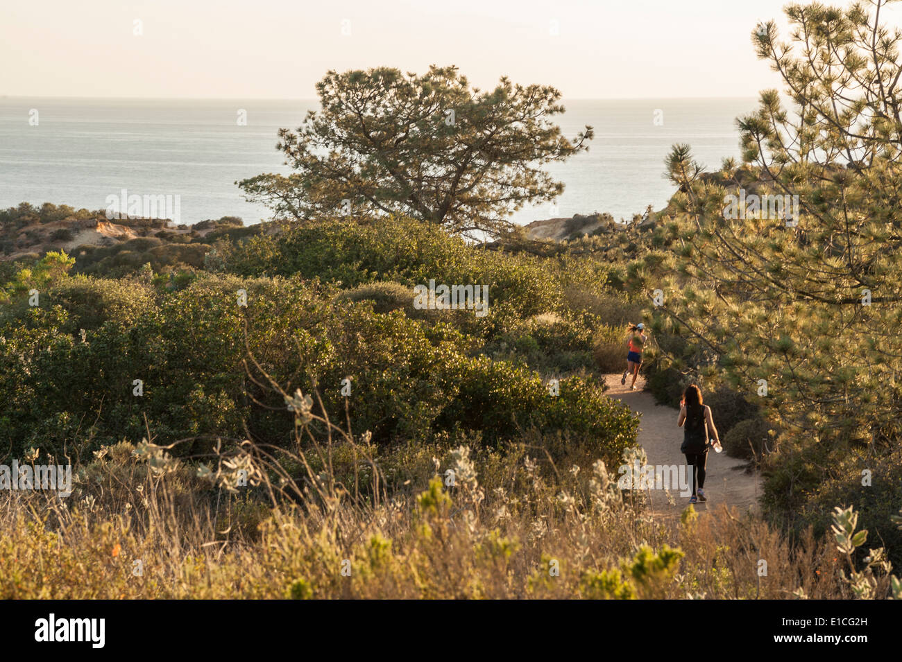 Joggers on trails at Torrey Pines State Park, La Jolla California - Stock Image