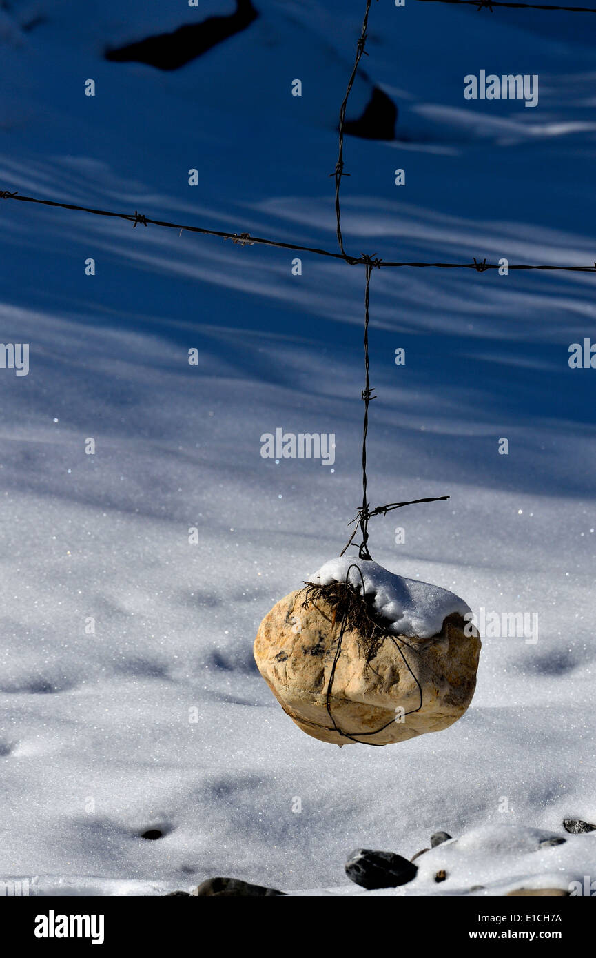 A large rock wrapped with barbed wire and hanging on a wire fence Stock Photo