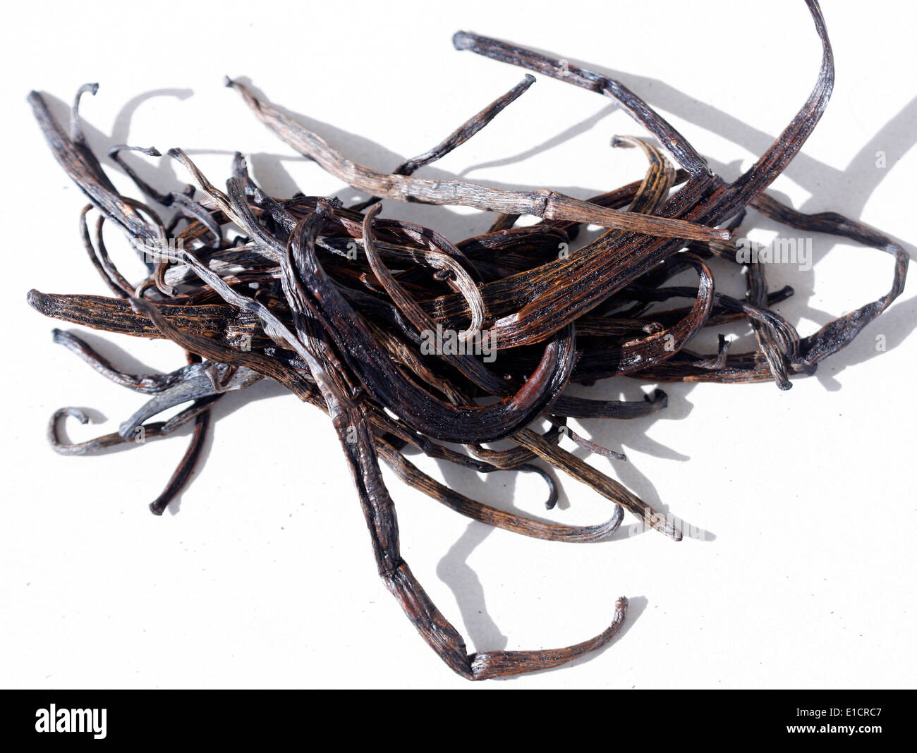 Low grade vanilla pods for use in making extract - Stock Image