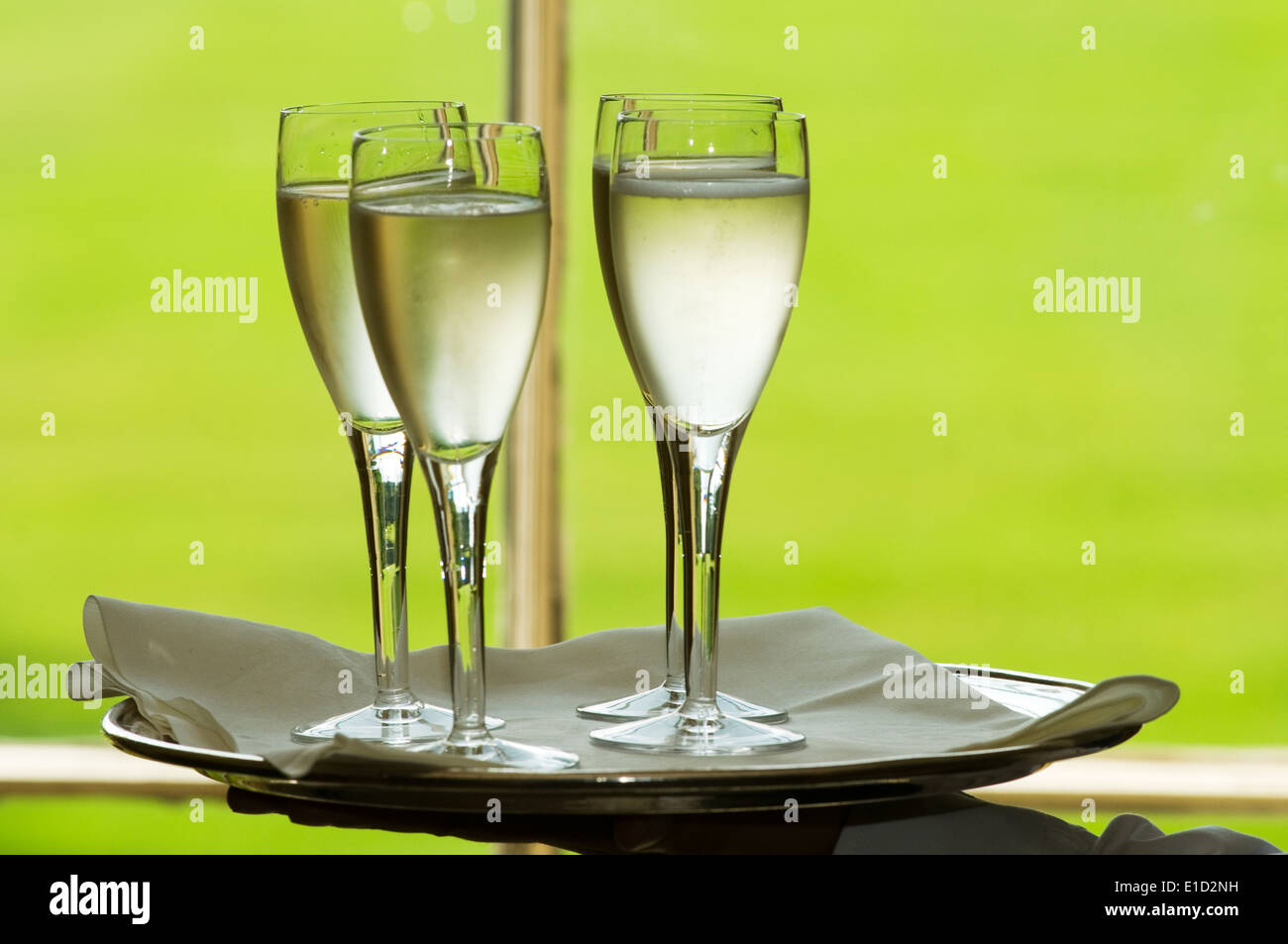 champagne flute flutes glass of glasses bubbly silver service celebration celebrations tray of drinks alcohol social drinker dri - Stock Image