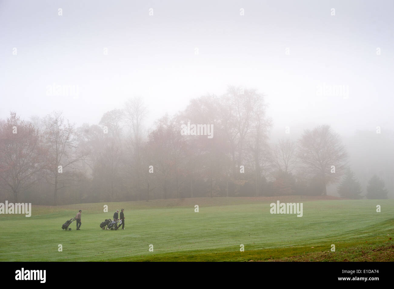 A group of golfers playing a round in an autumn mist - Stock Image