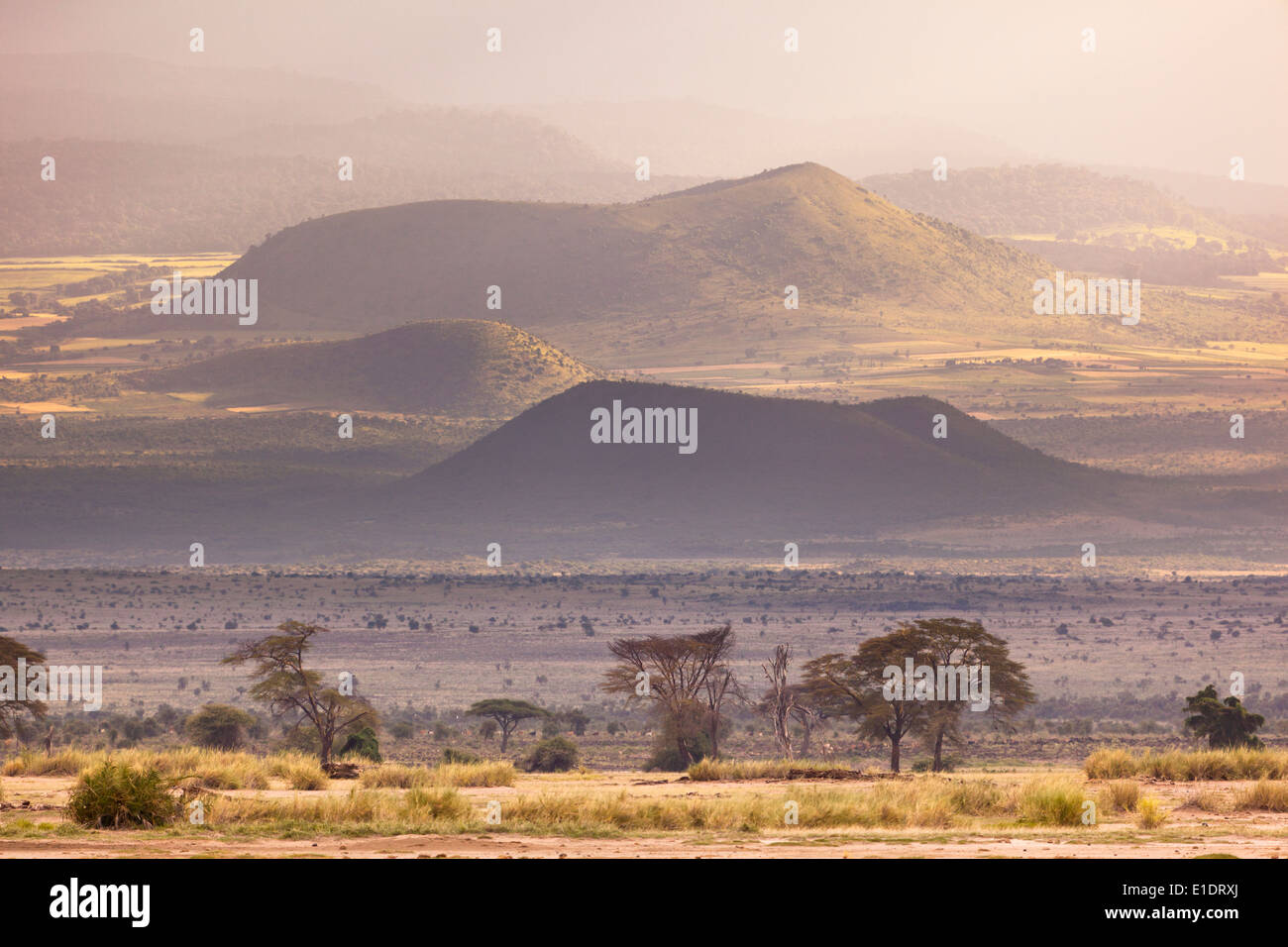 Volcanic craters on the flank of Mount Kilimanjaro seen from Amboseli National Park in Kenya with beautiful evening light. - Stock Image