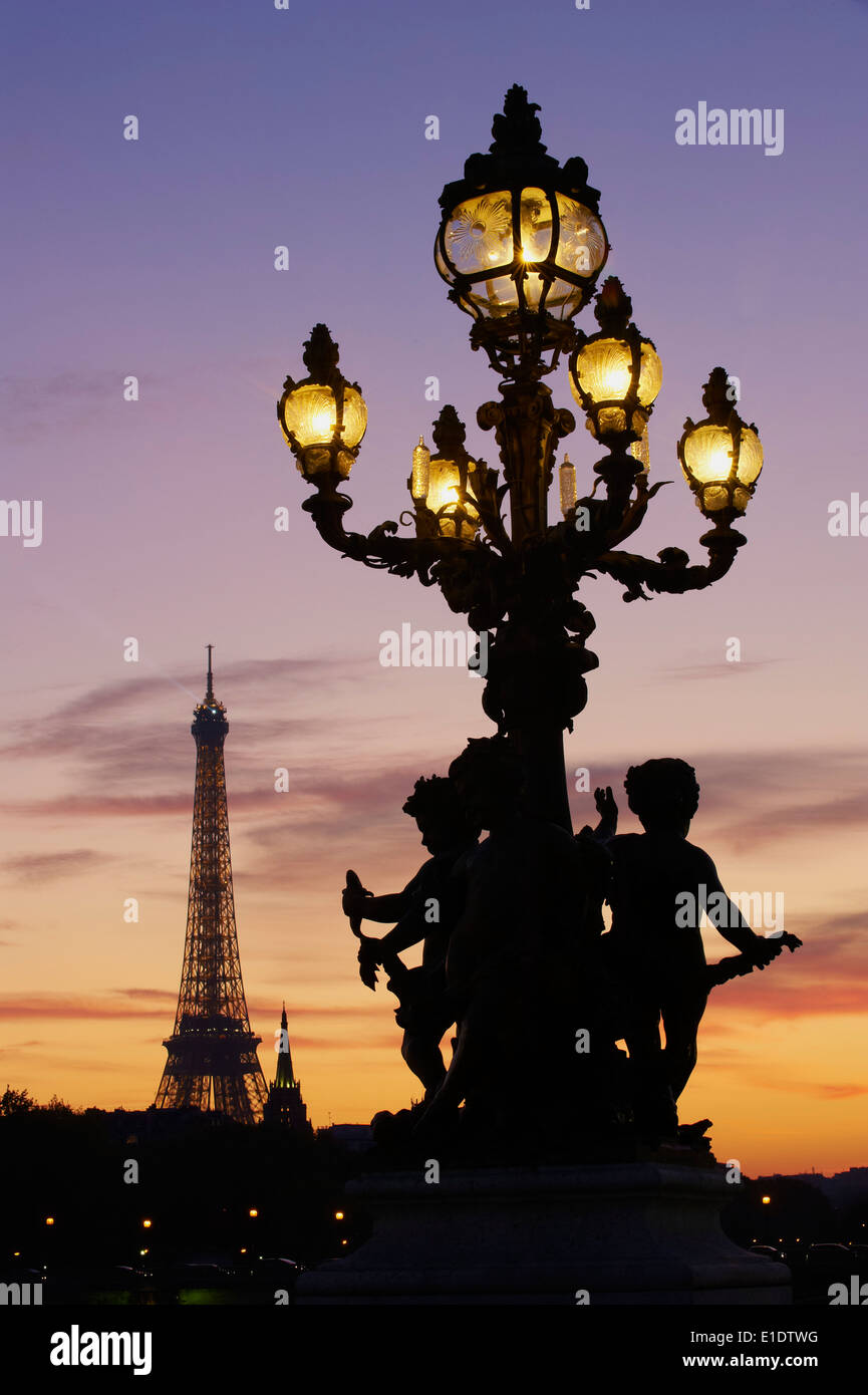 France, Paris, Alexandre III bridge and Eiffel Tower at night - Stock Image