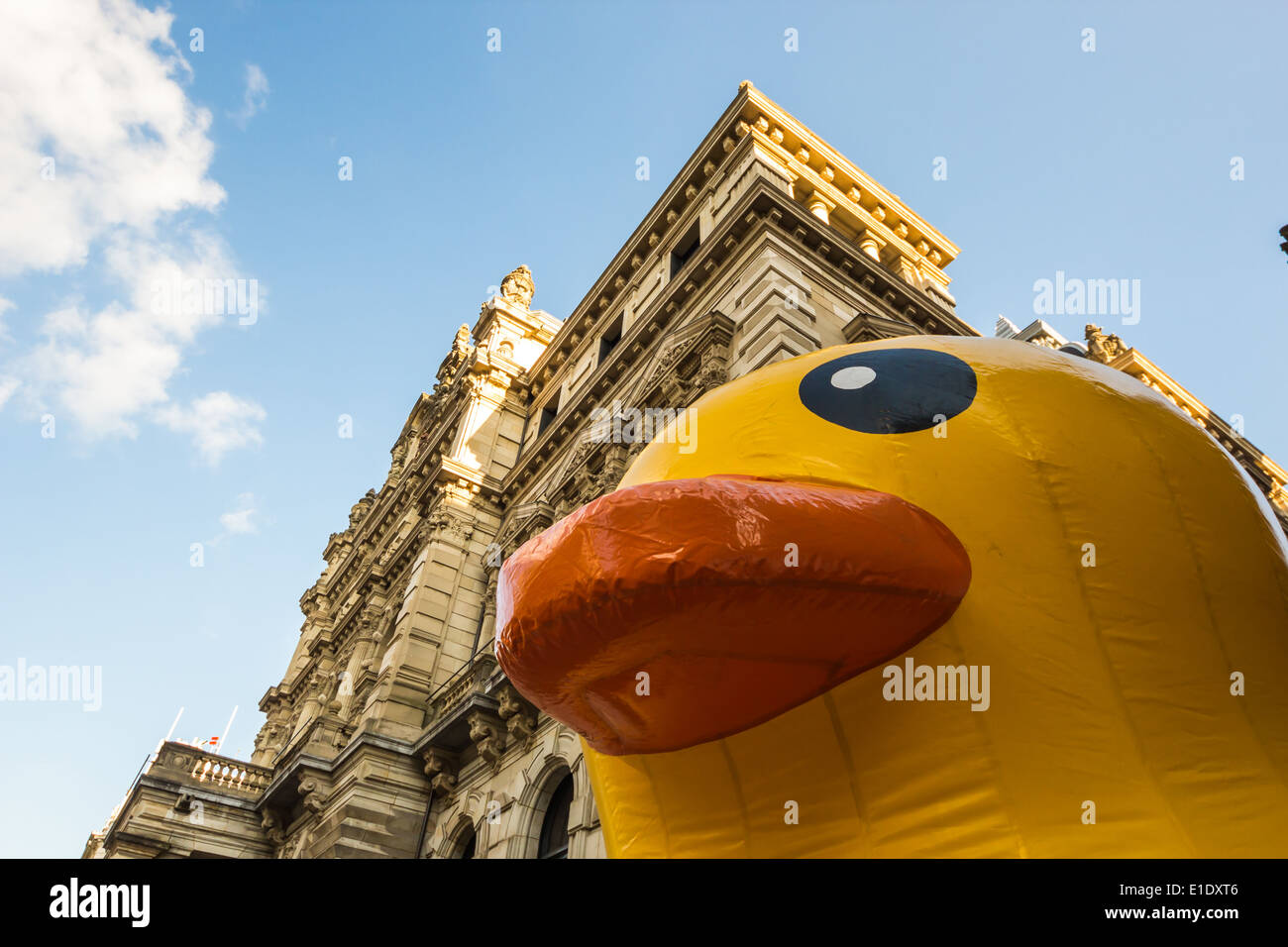 Giant Inflatable Duck Stock Photos & Giant Inflatable Duck Stock ...