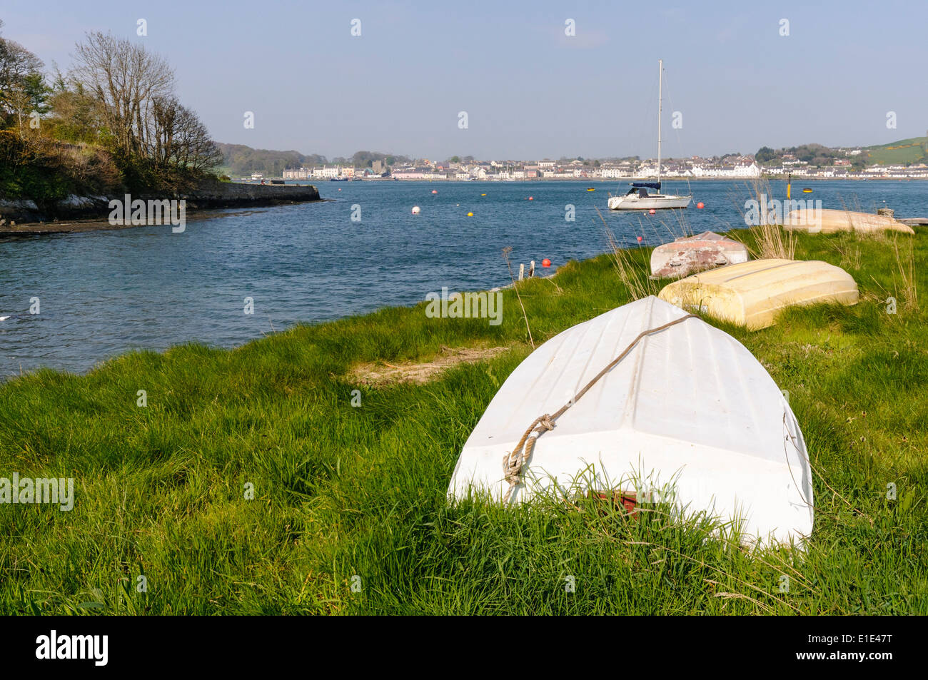Rowing boats beside Strangford Lough, looking over towards Portaferry - Stock Image
