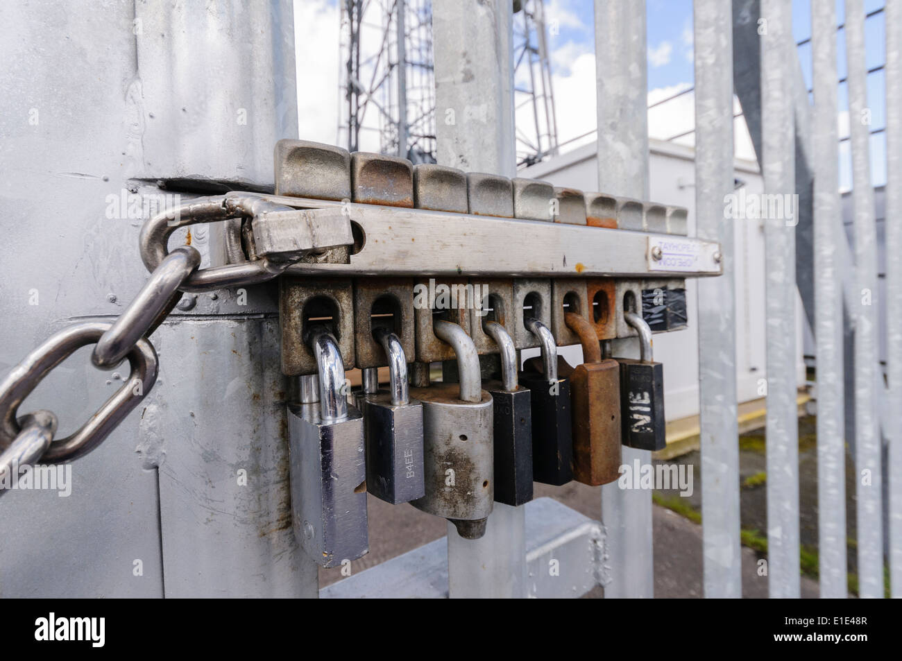 Multiple locks on a security gate. The removal of any one lock allows the gate to be opened. - Stock Image