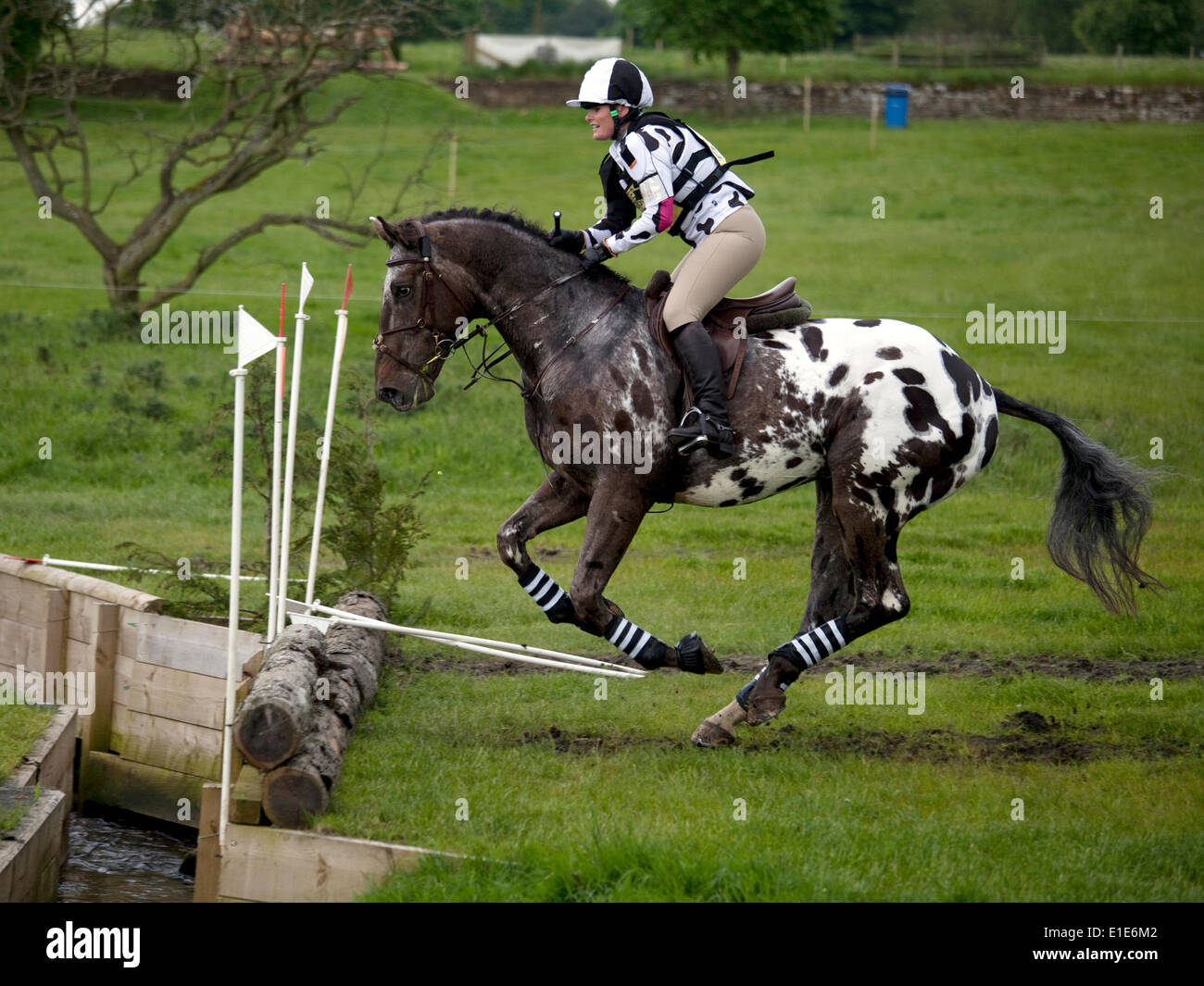 Belsay, UK. 01st June, 2014. A competitor in the cross country section jumping the open ditch during day two of the 2014 Belsay Horse Trials, held for the second year running in the grounds of Belsay Castle in Northumberland, England. Belsay Castle is managed by English Heritage and is open to the public all year. Credit:  AC Images/Alamy Live News - Stock Image