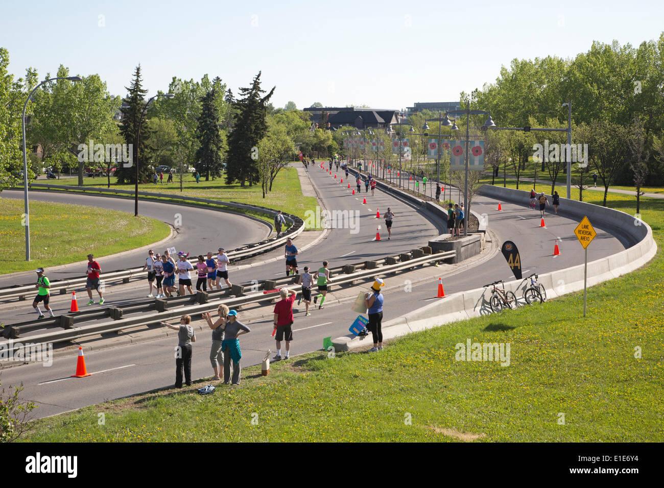 Calgary, Alberta, Canada. 01st June, 2014. Runners racing along Memorial Drive in the 50th Scotiabank Calgary Marathon - Stock Image