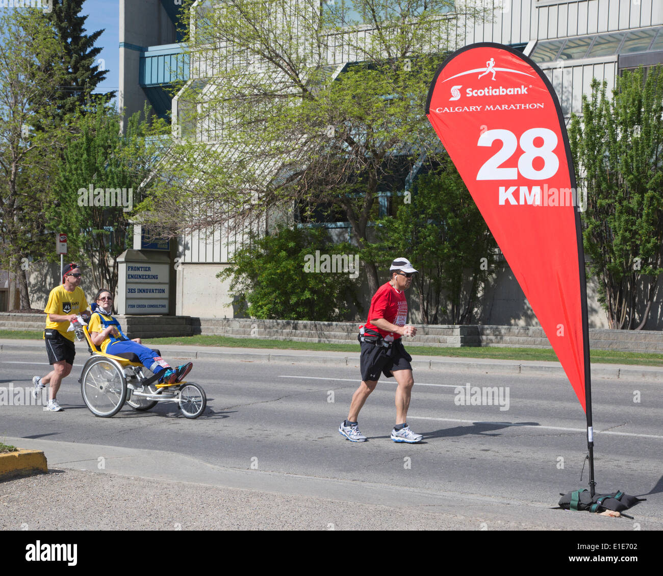 Calgary, Alberta, Canada. 01st June, 2014. Runners and wheelchair participant racing in the 50th Scotiabank Calgary Marathon on Sunday, June 1, 2014. Canada's longest running marathon attracted more than 15,000 participants and raised over one million dollars for charity. Calgary, Alberta, Canada. Credit:  Rosanne Tackaberry/Alamy Live News - Stock Image