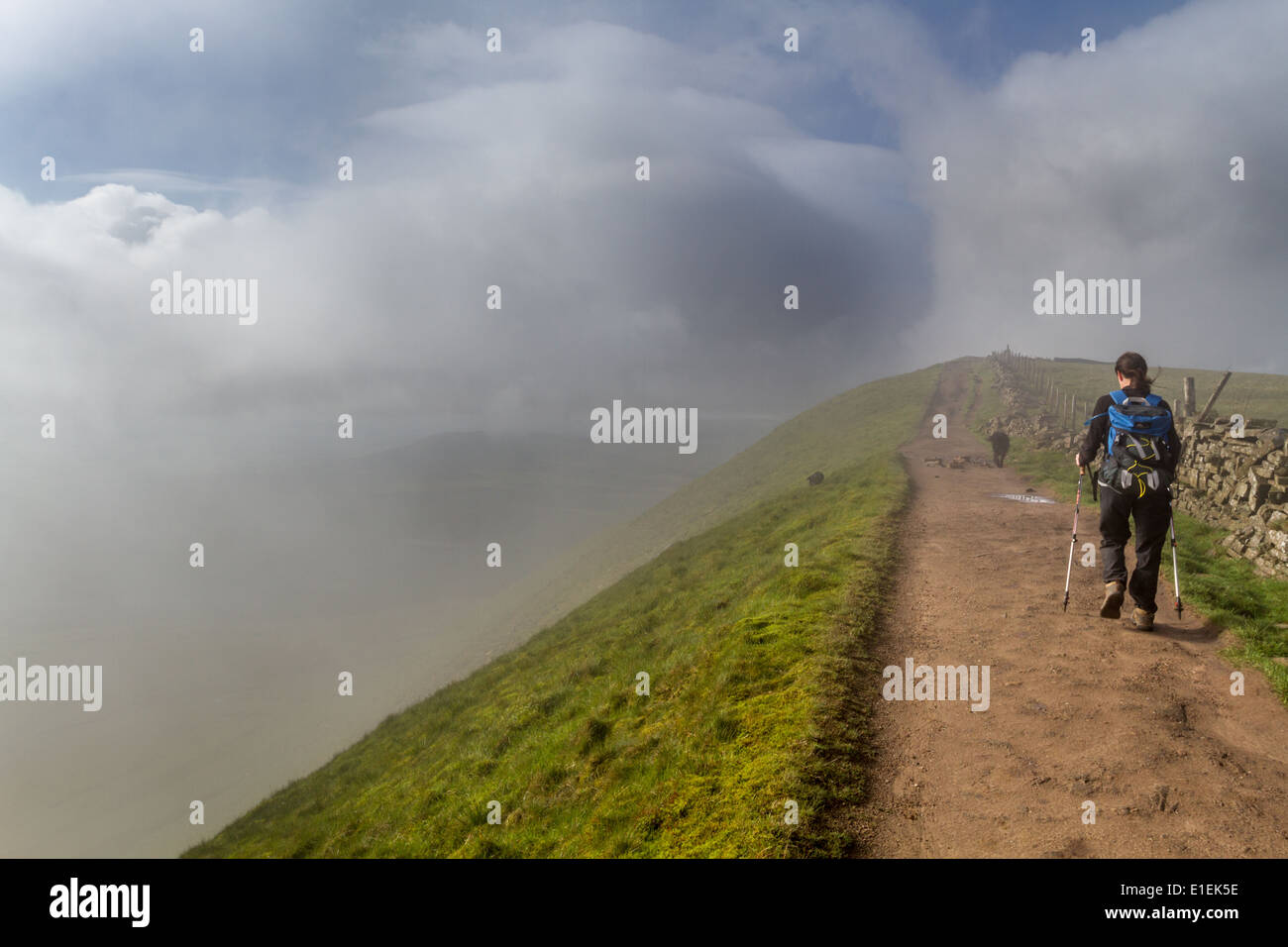 Female Walker person on the misty summit ridge of Whernside, one of the Yorkshire 3 Peaks - Stock Image