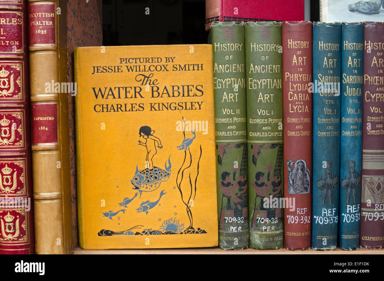 A shelf of vintage books in a secondhand bookseller's window including a copy of 'The Water Babies' by Charles Kingsley. - Stock Image