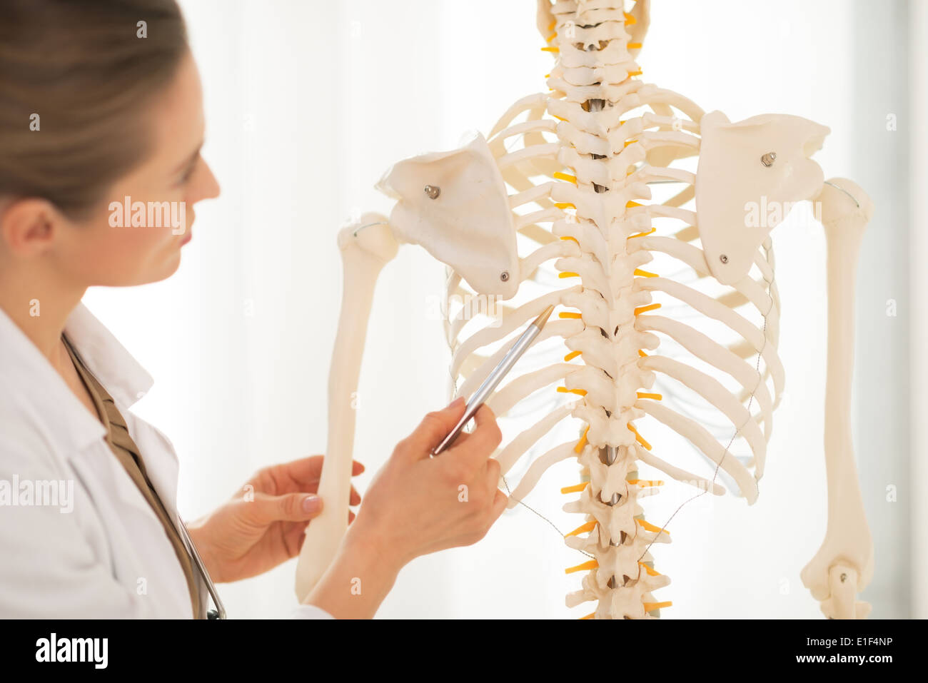 Closeup On Medical Doctor Woman Pointing On Spine Of Human Skeleton