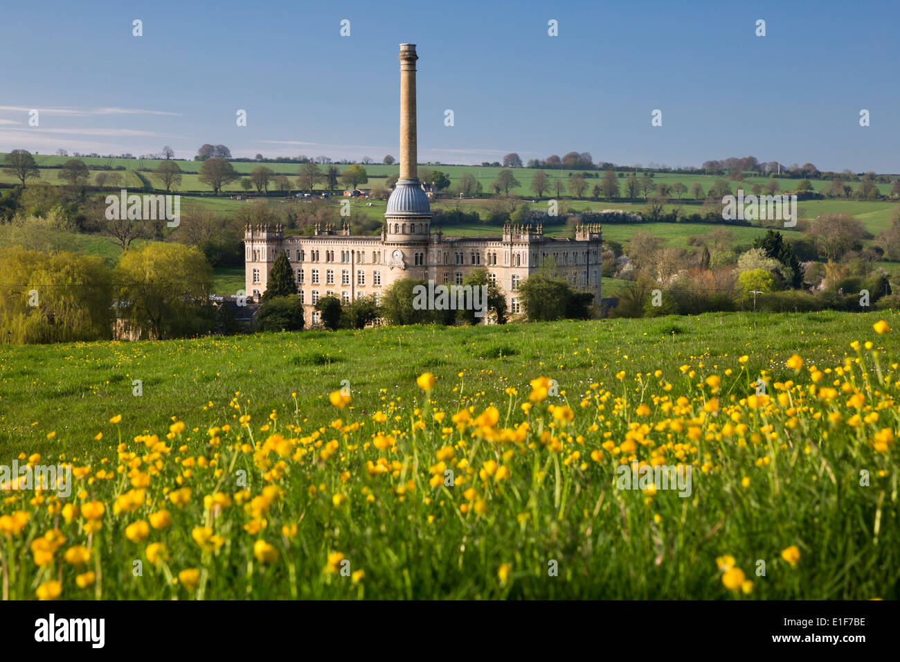 Bliss Mill with Buttercups - Stock Image