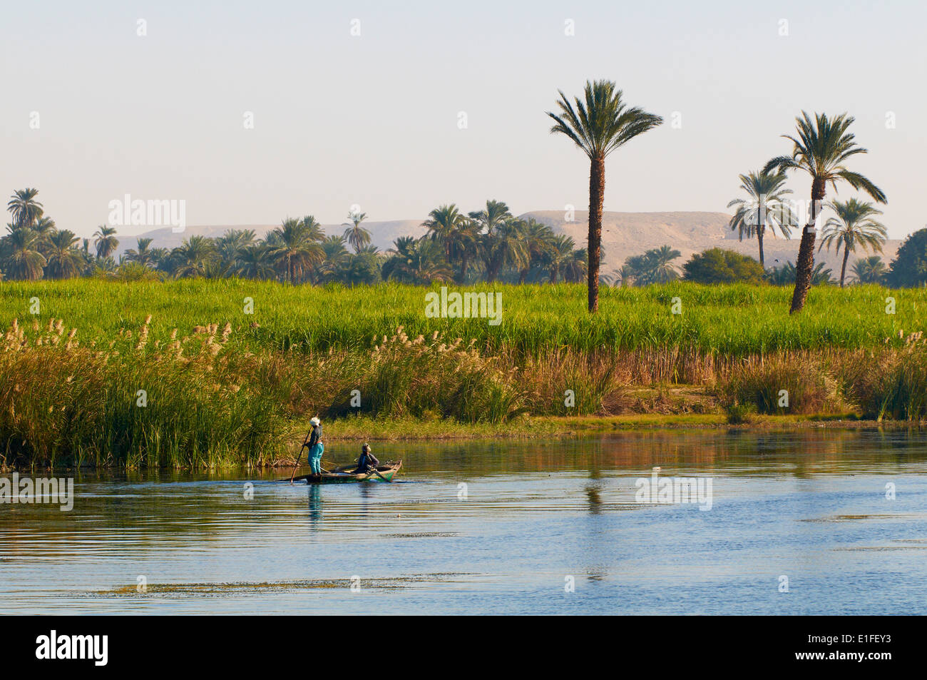 Egypt, cruise on the Nile river between Luxor and Aswan, fisher  - Stock Image