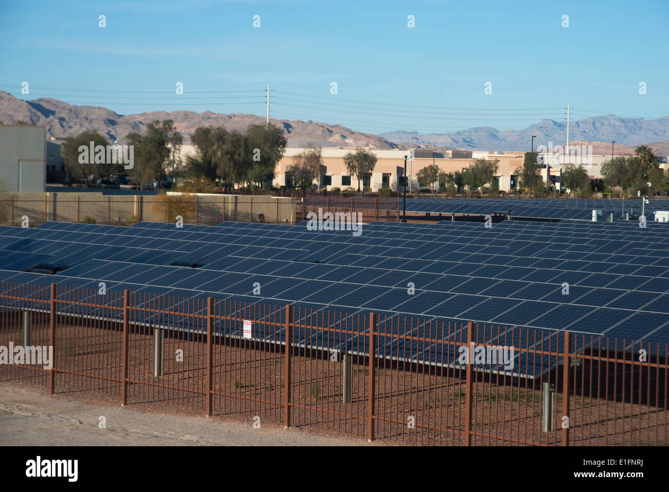 Large bank of solar panels, Las Vegas, Nevada, United States of America, North America - Stock Image