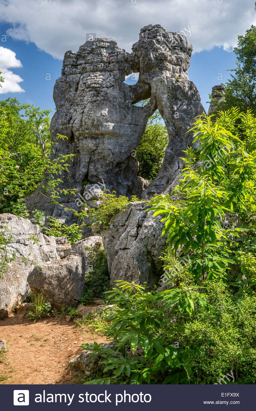 Bois de Païolive in Ardèche (France) - Stock Image