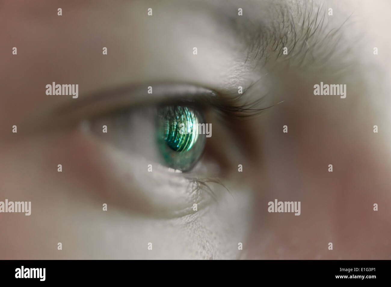Reflection of a computer screen in a human eye - Stock Image