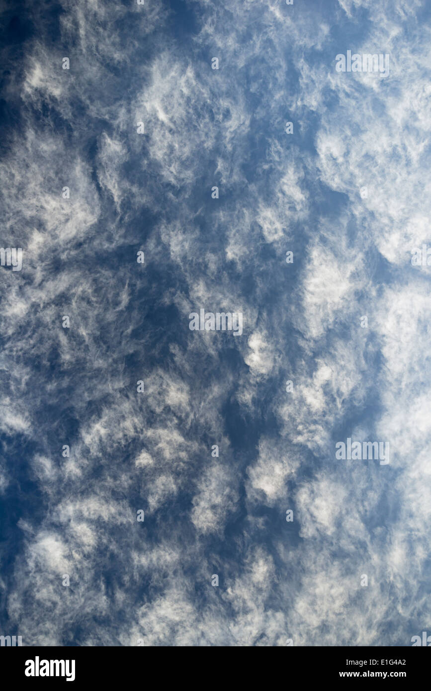 cirrocumulus lacunosus fluffy clouds in blue sky - Stock Image