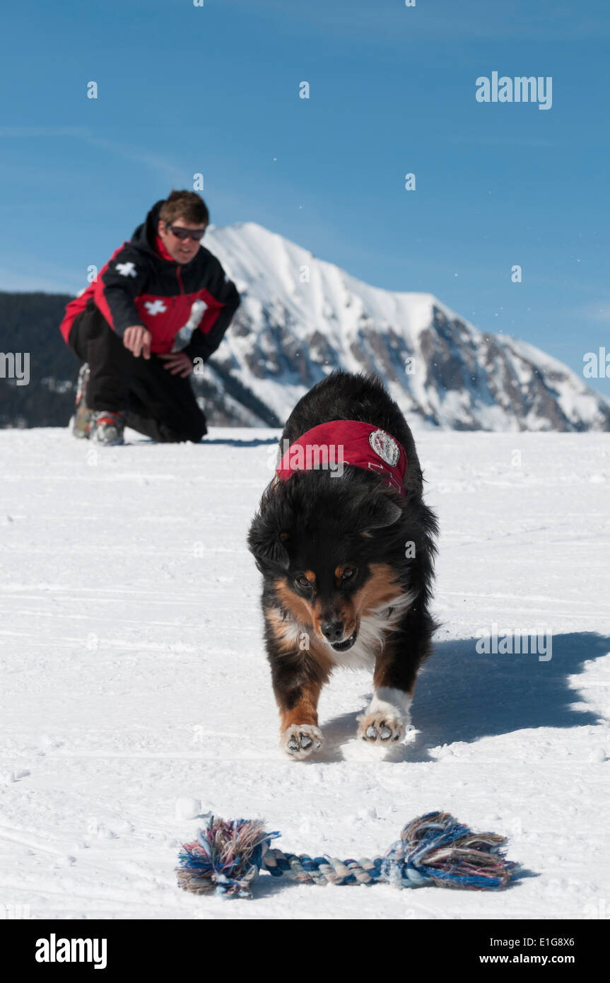 Male ski patroller and his search dog training at the Crested Butte Ski Resort, Crested Butte, Colorado. Stock Photo