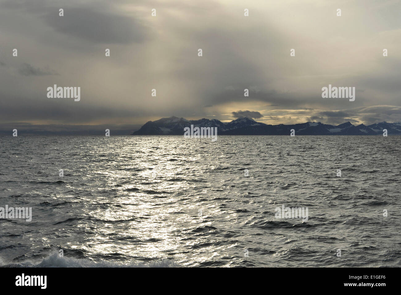 Glistening water of the Isfjord in the backlight with mountains on the horizon, 21 August 2012 - Stock Image