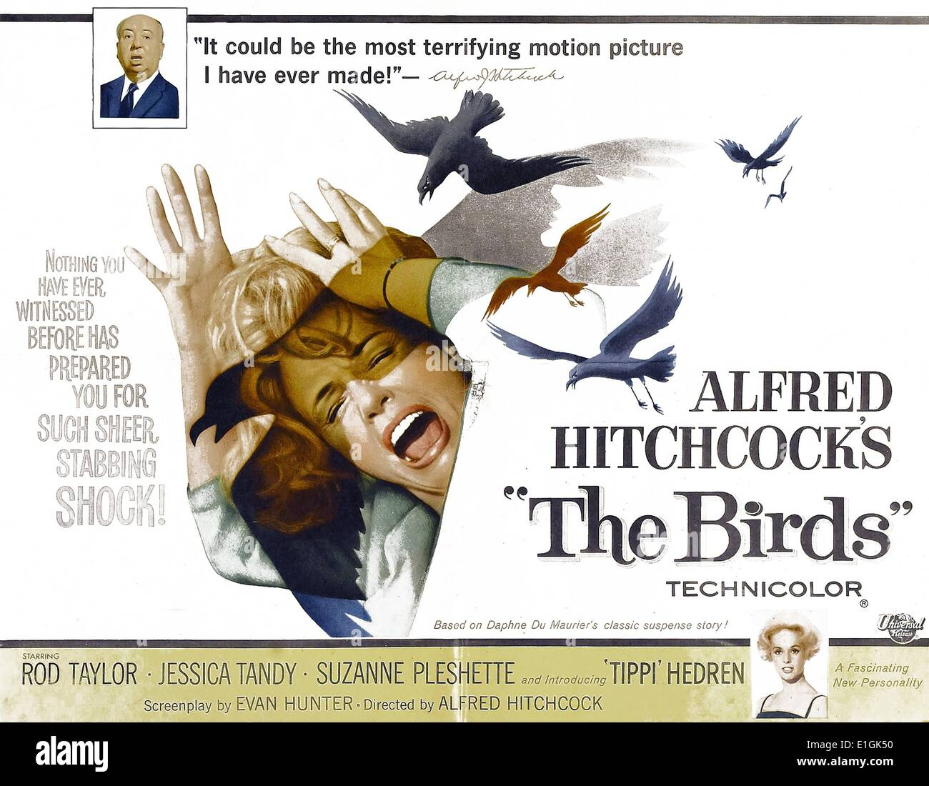 'The Birds' starring Rod Taylor, Jessica Tandy, Suzanne Pleshette and 'Tippi' Hedren a 1963 suspense/horror film. - Stock Image