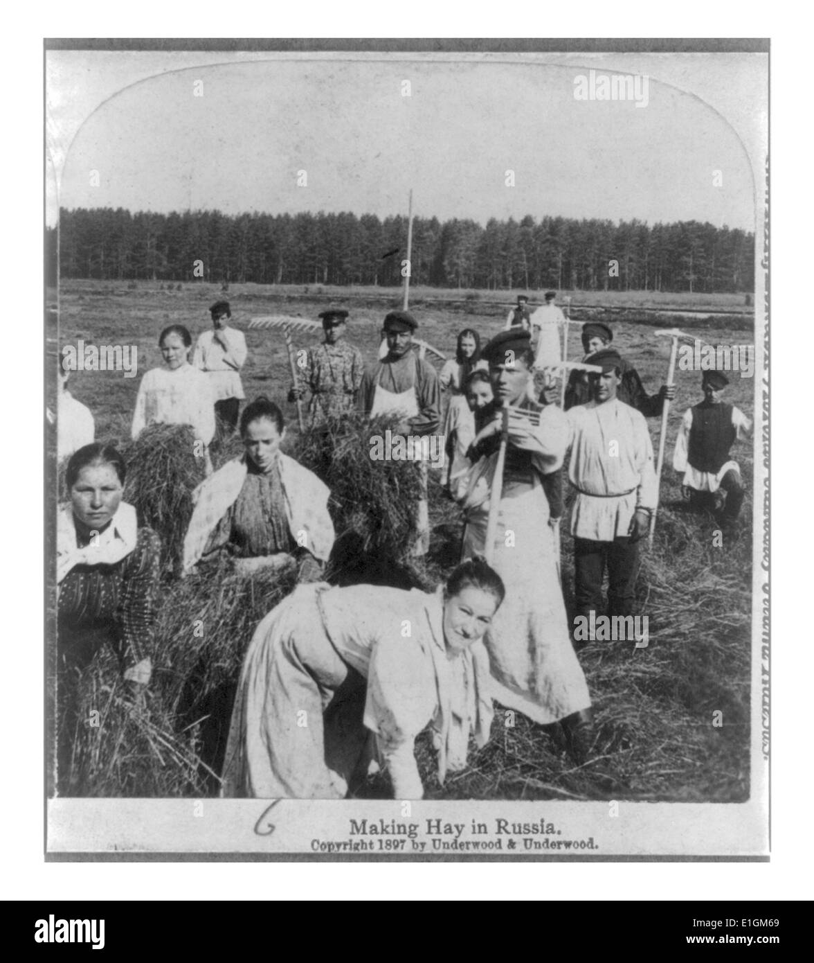 Photograph shows a group of Russian women and men making hay in Russia. Dated 1897 - Stock Image