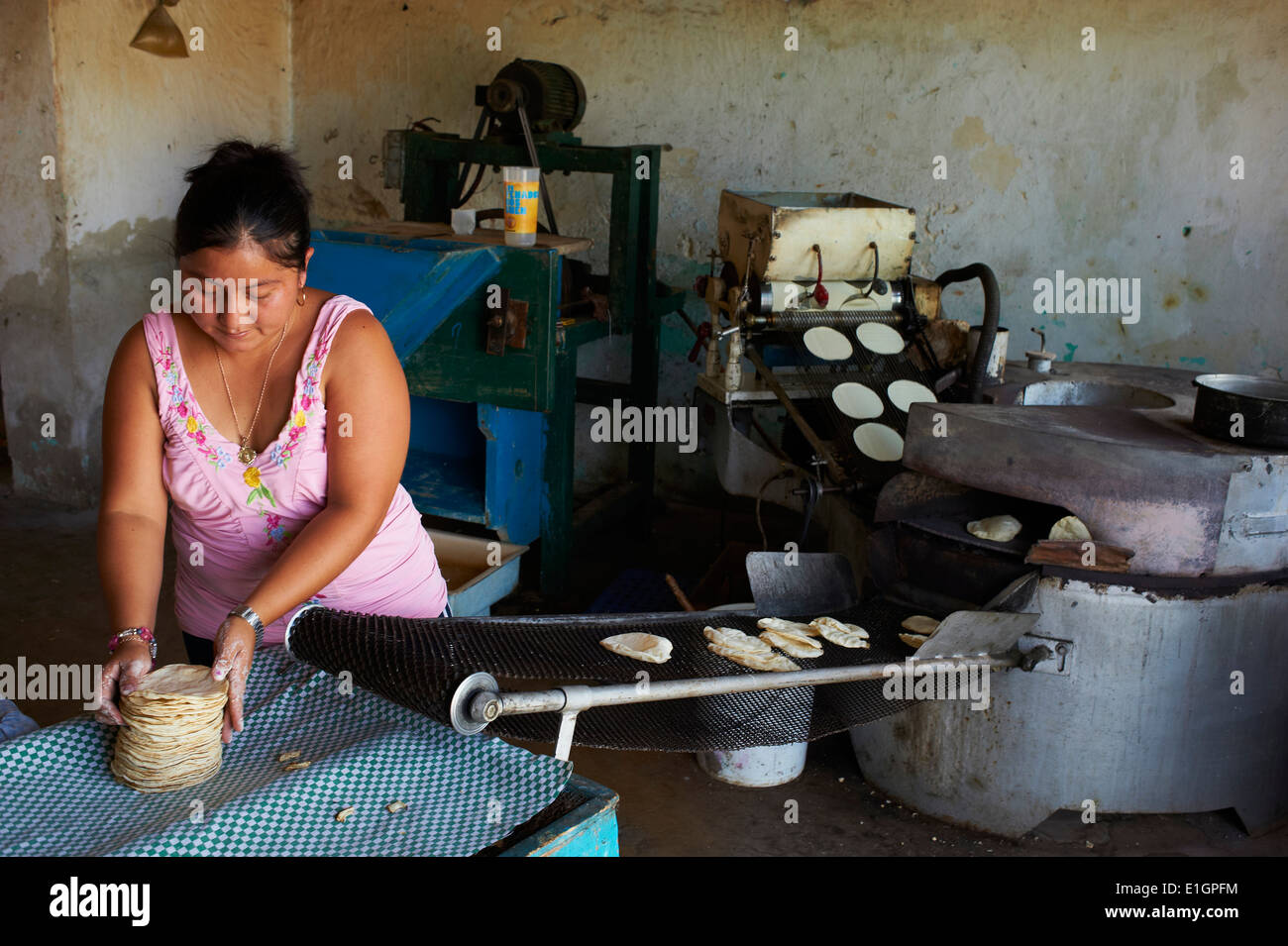 Mexico, Yucatan state, Merida, the capital of Yucatan, tacos factory - Stock Image