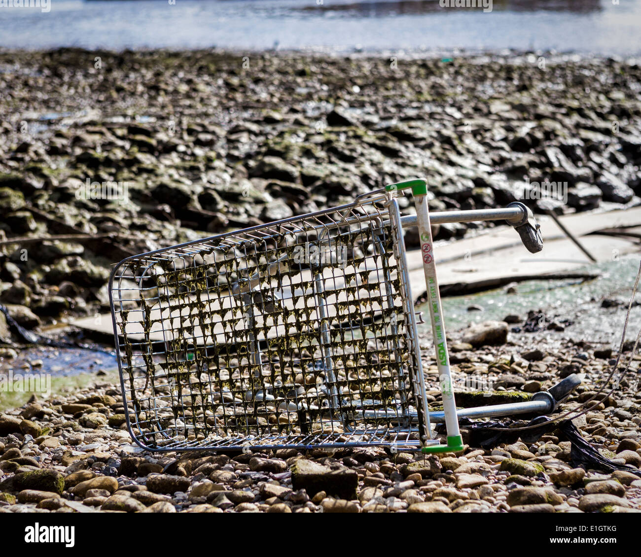 Old rusty discarded Asda shopping trolley in the exposed riverbed of the River Thames at low tide, Greenwich, London, UK - Stock Image