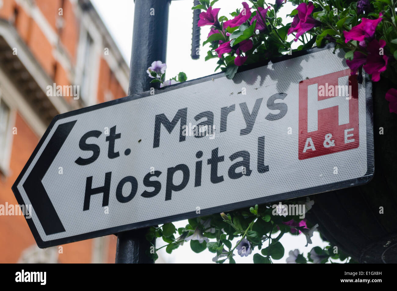 Sign for St. Mary's Hospital, London - Stock Image