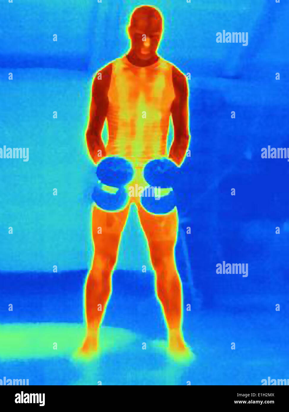 Front view thermal image of young man training with barbells. The image shows the heat produced by the muscles - Stock Image