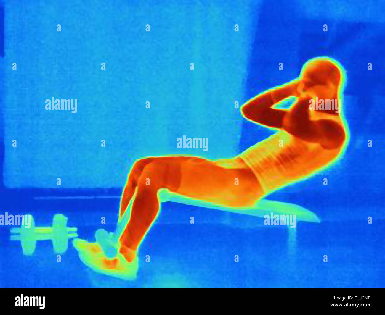 Thermal image of young man doing pull ups on weight bench. The image shows the heat produced by the muscles - Stock Image